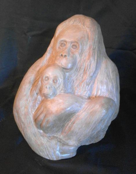 orang-outan et son petit