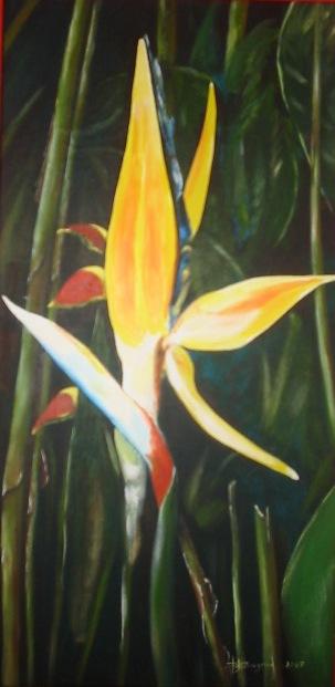 fleur des antilles (50X100)