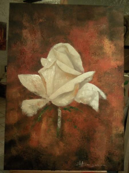 rose blanche (90X70)